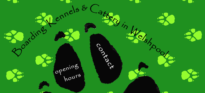 Dog Kennels in Welshpool